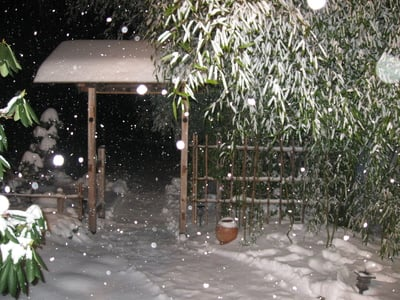 December2012JapaneseGardenSnow.jpg