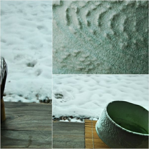DSC_4024_Fotor_Fotor_Collage.jpg