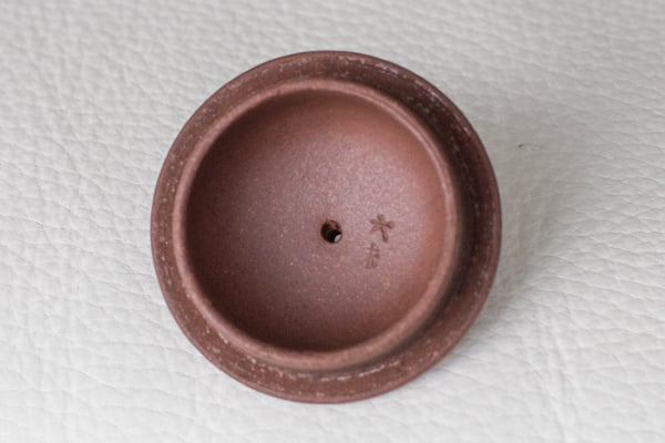 Zini under lid (1 of 1).jpg